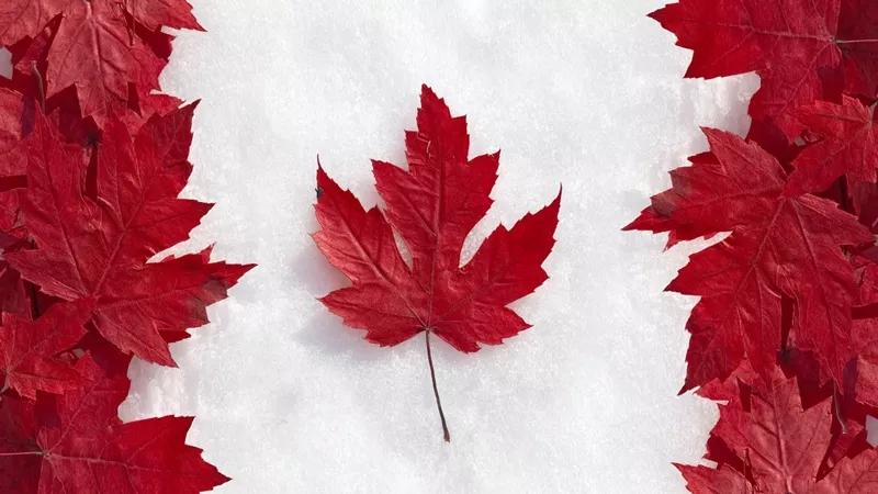 留学加拿大,毕业后如何在加拿大快速找到工作?