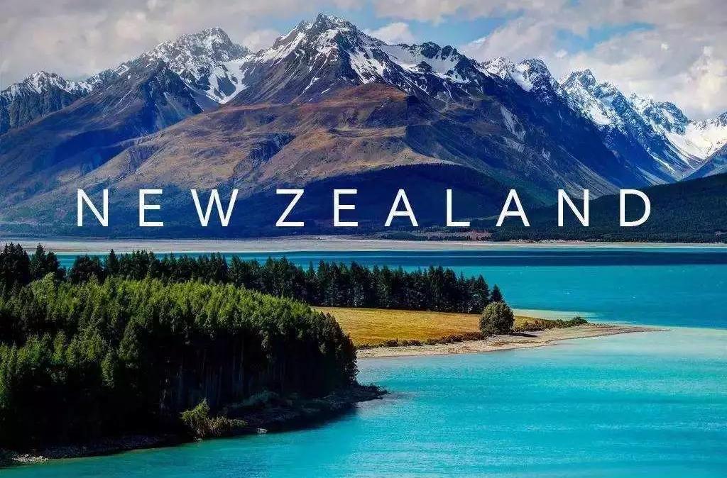 三万就能读的新西兰博士,申请条件和就业前景如何?